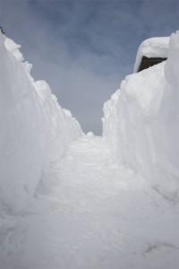 La nuova neve