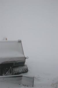 il gatto delle nevi stamattina